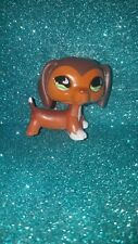 Littlest Pet Shop LPS Authentic 675 Savvy Savannah Dachshund Dog RARE