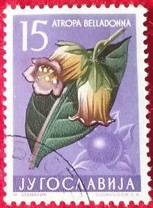Yugoslavia Stamp   1957   15Din    Flowers     (1323)
