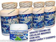 5Cellulas Madres Cuatro Botellas Celulas Mejora tu Salud bioxtron bioxcell, cell