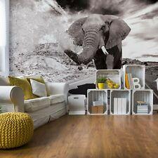 Elephant Black And White Wallpaper Wall Mural Fleece Easy-Install Paper