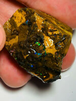 Australian Rough Boulder Opal GEM GRADE MULTI.F KOROIT MATRIX 158cts WB732 Video