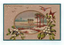 """Vintage Postcard """" A Merry Christmas"""" Birds Water Scene Berries Embossed Germany"""