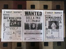 "Harry Potter / The Daily Prophet (11"" x 17"") Movie Poster Prints (Set of 3)"