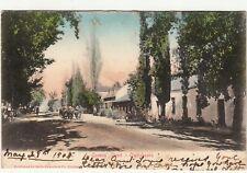 CGH: EDVII Postcard, Queens' St, Oudtshoorn: Oudtshoorn-Sheffield, 29 May 1905