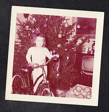 Vintage Photograph Little Girl w/ Bicycle Christmas Tree & Retro Television TV