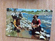 U1-3 Postcard used 1970 california panning gold
