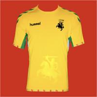 Lithuania National Team Soccer Shirt jersey 2018-2019 Home Hummel football