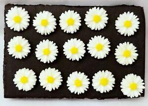 DAISY FLOWER THUMB TACKS - Set of 15 Handmade Decorative Push Pins
