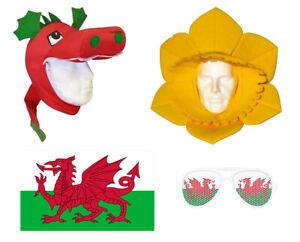 Welsh Cymru Sports Supporter Daffodil Dragon Hat Flag Novelty Glasses Rugby Hats