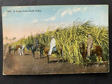 CARIBE 1900-20s, SUGAR CANE FIELD Post Card / Tarjeta Postal, sin usar/unused