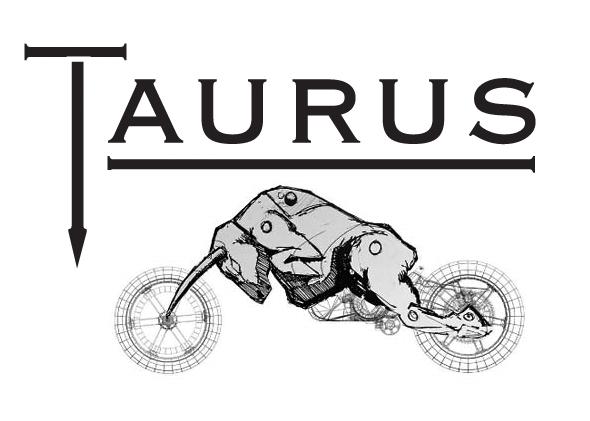 TAURUS-MOTORS