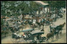 Postcard Binghampton Ny/New York Ross Park Rally 1907 ?