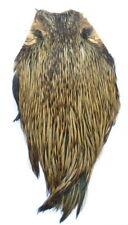 Collo di gallo 1° scelta barred ginger naturale