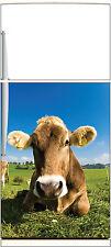 Adesivo frigo elettrodomestici decocrazione cucina Mucca 60x90cm Ref 1362