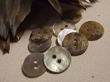 LOT 8 BOUTONS  Nacre naturel pour déco * 12 mm * 2 trous * scrapbooking