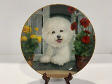 A Perfect View Collector's Plate - Bichons Frise - Michele Amatrula Danbury Mint