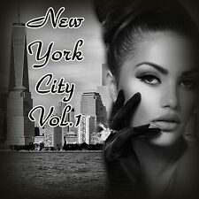 New York Vol.1 Digital Photoshop Backgrounds Templates Green Screen Backdrops