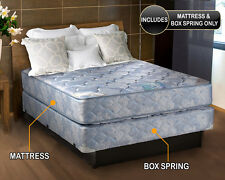 Chiro Premier Orthopedic Blue FIRM VERSION Twin Size Mattress and Box Spring set