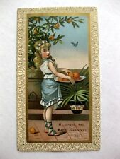 1900s Trade Card Woman Picking Bowl of Oranges Off Tree Happy Christmas