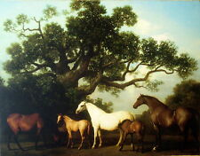 Art Painting Print On Canvas Ready to Hang Stubbs Mares Foals Horse RARE HUGE