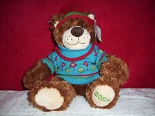 2009 Mary Meyer plush bear with blue sweater and hat with tags