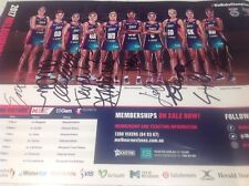NETBALL MELBOURNE VIXENS OFFICIAL SIGNED FULL TEAM POSTER,COLLECTORS CHAMPIONS