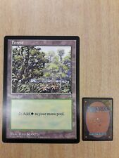 Magic The Gathering Cards - Oversized Promo - Forest