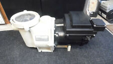 Intelliflo pool pump w/ Ecotech 3HP variable speed motor