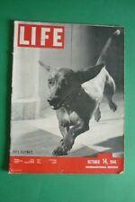 MAGAZINE LIFE OCTOBER14 1946 ROMY HAMMES ARCHITECT BARRY WILLS BERNARD RUDOFSKY