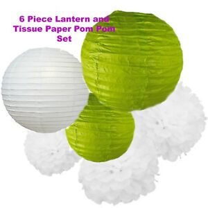 Tissue Paper Pom Poms,Paper Lanterns,White & Lime Green,Easter/Birthday/Party
