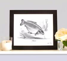 BENSON Legendary Carp Fishing Drawing MOUNTED Print Picture Rare Collectable