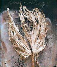 Anselm Kiefer: Sternenfall. Chute d'etoiles (2007)