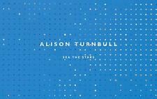 Alison Turnbull: Sea the Stars by Ed Krcma (Paperback, 2012)