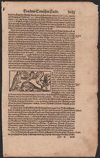 1493 Rare gravure originale Aigle Autruche Schedelsche Weltchronik oiseaux