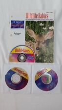 Corel Stock Photo Cds, Wild Babies and Flowers, Royalty Free, Pcd format