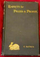 RARE! 1891 2nd,Rayson RABBITS FOR PRIZES & PROFIT,Breeding,Feeding,Diseases,Care
