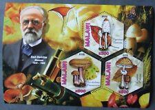 MALAWI 2012 -Mushrooums,Mycologiste-1 M/Sh, MNH>** MW 24