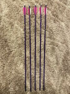 Easton Genesis Archery Arrows (5) Purple