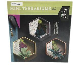 Craft Crush Mini Terrariums Craft Kit Make 3 Geometric Terrariums AC1979