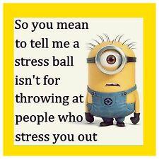 4x4 FRIDGE MAGNET SILLY MEME FUNNY MINION HUMOR Stress Ball