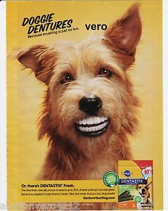 magazine ad PEDIGREE DOGGIE DENTURES dog teeth 2012 advert print terrier tea