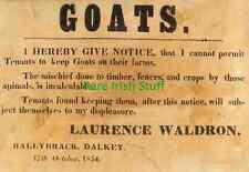 No Goats On Farms - 17 October 1854 -  Irish Dalkey Ballybrack Ireland Print
