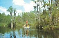 Postcard Okefenokee Swamp Fargo Georgia