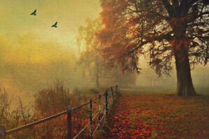 Beautiful Autumn Art Print Poster 18x12 inch