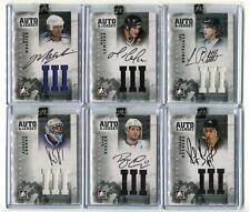 2012-13 ITG Superlative Jerseys Autographs Silver  #AJLR Luc Robitaille /30