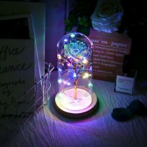 Galaxy Rose LED Light Flower Glass Dome Any Occasion Girlfriend/Wife Gift