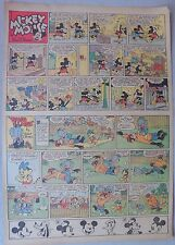 Mickey Mouse Sunday Page by Walt Disney from 1/29/1939 Tabloid Page Size