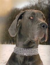 "Sprenger collar acero cromo-plateado 4 filas - 22""/55cm - 3.0 mm"