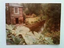 Vintage 80s Photo Paris France Manor House Hotel Small Creek Stream Flower Patch