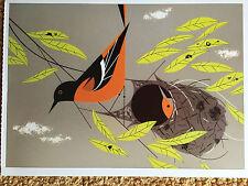 CHARLEY CHARLES HARPER   Baltimore  Orioles New  Art print  nest Oriole